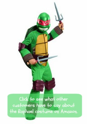 Teenage Mutant Ninja Turtles costume Raphael